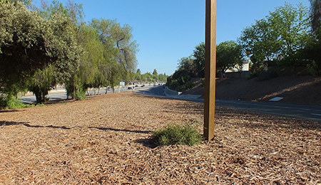 Highway Erosion Control Projects